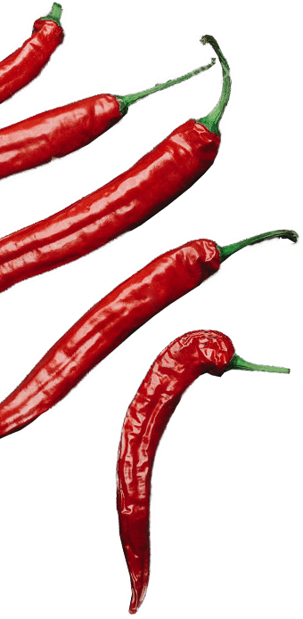 hot_peppers_cropped_340x695